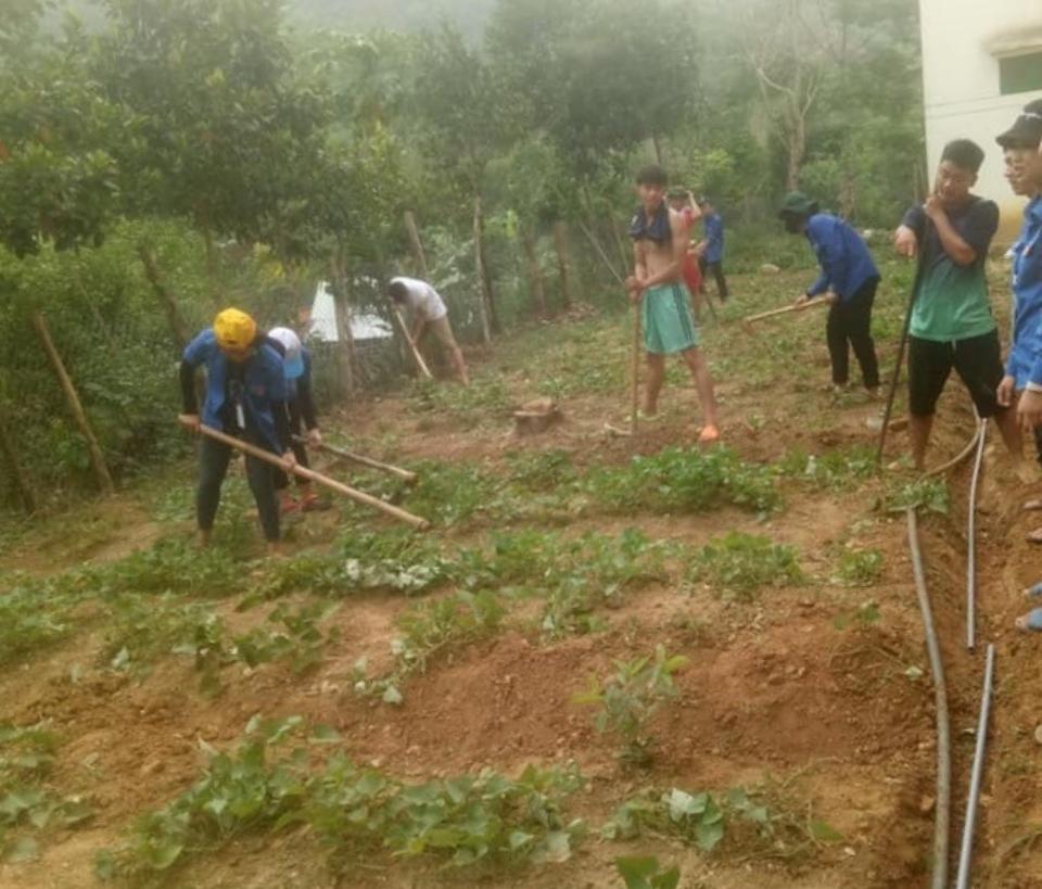 Triển khai hệ thống tưới nước tự động cho vườn rau bán trú trường PTDTBT THCS Hoàng Văn Thụ